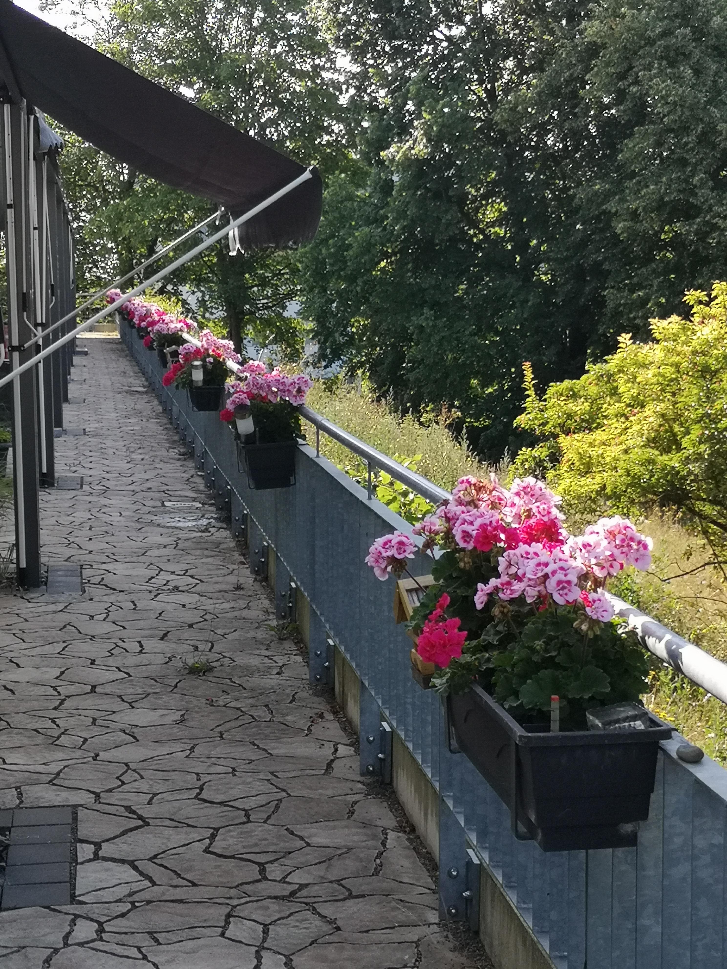 Hospiz Salzgitter - Foto 2