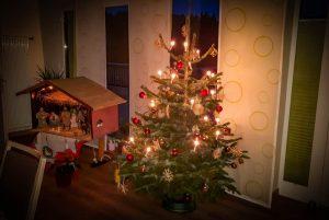 Hornbach Spende Weihnachtsbaum